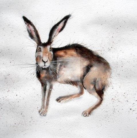Hare, quirky, contemporary artwork, original painting, watercolour, square, framed,