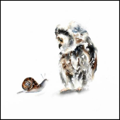 contemporary birthday card, blank inside, owl, for her, wife, daughter, sister, mum, mother, large, quality, greetings card, fine art, watercolor, square, large, for sale, buy, get well, friend, best wishes, thank you, beautiful, cute,