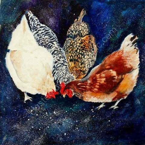 chickens, hens, contemporary, farmyard, original watercolour, art, painting