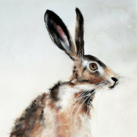 greeting, card, british, hare, brown, watercolour, birthday, flowers, mother, celebration, anniversary
