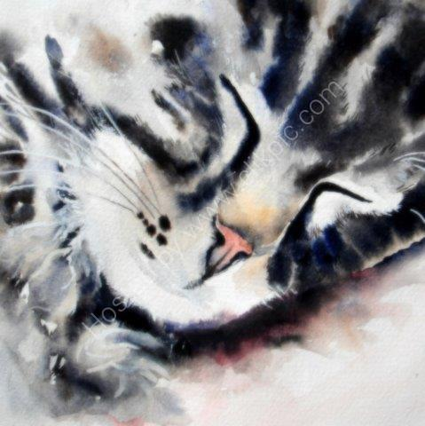 tabby, cat, sleeping, watercolour, fine art, contemporary art, cat nap, original artwork, small paintings, cat lovers