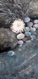 Sea Anemones and Pebbles