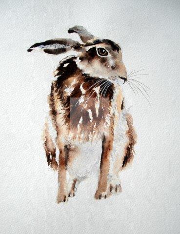 Hares, wildlife animals,original artwork,watercolour painting, award winning artist, framed artwork, contemporary design, British brown,