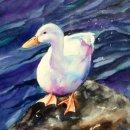 'Wet Feathers' orginal watercolour