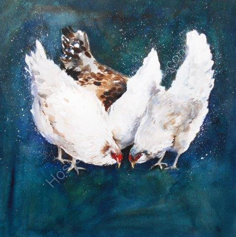 chickens, watercolour, art, contemporary, chickens, farmyard, animals, cute, quirky, painting