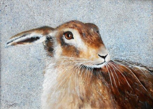 Hares, wildlife painting, award winning artist, original artwork, beautiful, watercolour original, forest animals, framed, beautiful artwork