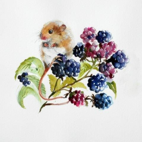 mouse, blackberries, cute, field, watercolour, painting, art, wildlife