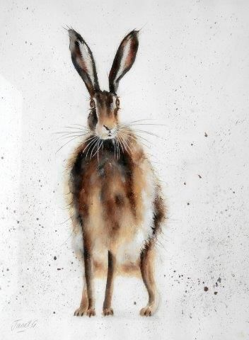 hare, watercolor, watercolour, art, wildlife, contemporary, art, painting