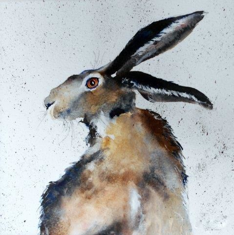 hare, art, watercolour, wildlife, animals, watercolor, painting, original