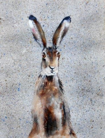 Hare, wildlife, watercolor, art, watercolour, animals, original artwork, contemporary artwork, cute wildlife creatures, animals