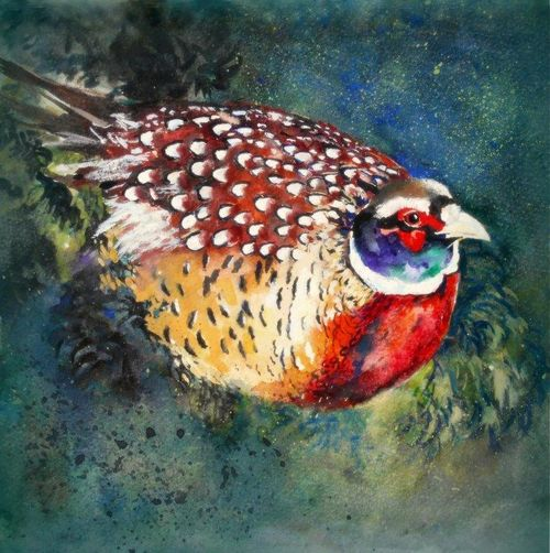 Pheasant, beautiful original fine art watercolour painting, birds, shooting, sport, framed, hedgerow, watercolour, wildlife birds, sporting enthusiast, artwork, painting,
