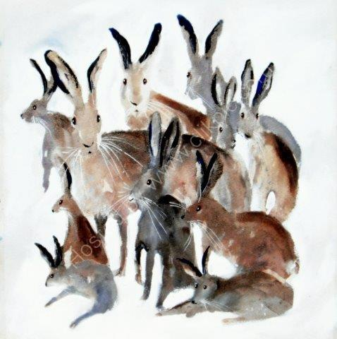 greeting, card, cute, contemporary, blank inside, wildlife card, forest animals, watercolour, birthday, celebration, anniversary