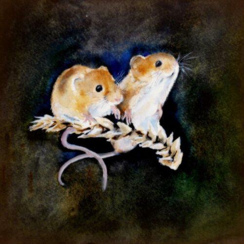 greeting card, happy birthday, countryside, field mice, cute mice, for wife, friend, large card, blank inside, watercolor, art card