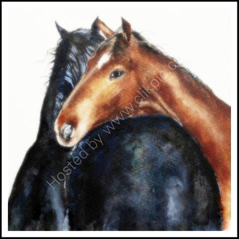 'Horses' Greeting Card £1.75