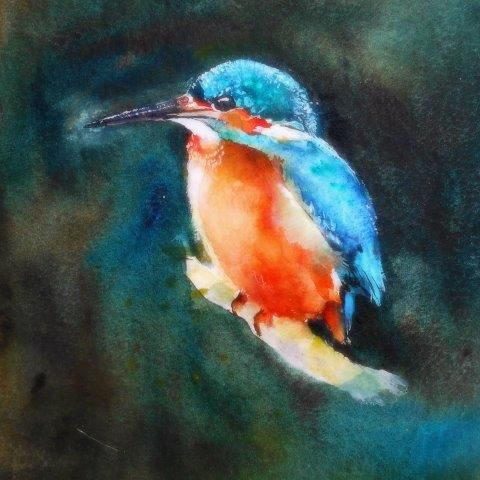 kingfisher, birthday, male, card  greetings, wildlife, art, contemporary, birds, RSPB, watercolour art contemporary, beautiful