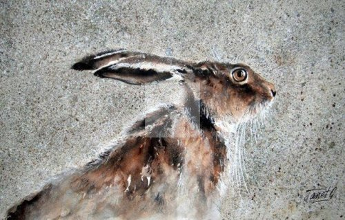 Hares, watercolour painting, Christmas present, award winning artist, contemporary artwork, detailing, detailed, realistic