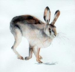 Hare running, original watercolour, fine art, award winning artist, wildlife animals,
