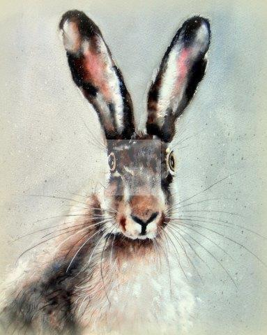 hare, portrait, giclée, art, watercolour, wildlife, print, contemporary
