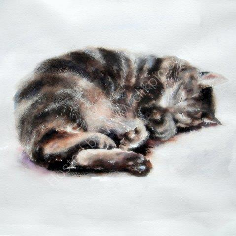 greeting, card, watercolour, tabby, cat, cute, birthday, celebration, anniversary