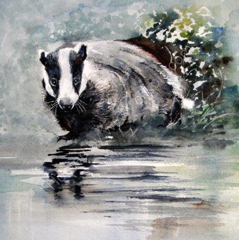 greeting, card, watercolour, badger, wildlife, watercolour, extinct, birthday, celebration, anniversary