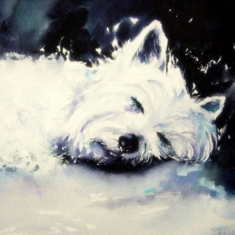 greeting, card, cute, dog, westie, terrier, art, westhighland terrier, blank inside, watercolour, birthday, celebration, anniversary, art, birthday