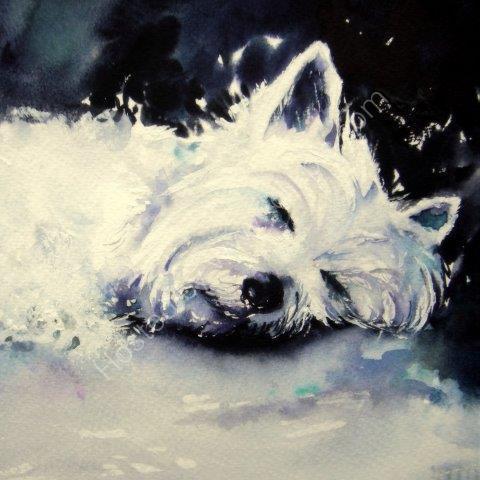 greeting, card, cute, dog, westie, terrier, art, watercolour, birthday, celebration, anniversary, art, birthday
