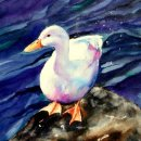 'Wet Feathers' Greeting Card