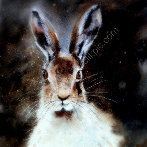 'Moonlit' Hare Greeting Card £1.75