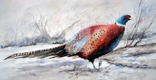pheasant, fields, shooting, game, forest, birds, watercolour, fine art, watercolor, winter, painting, snow, christmas