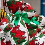 Welsh teddies