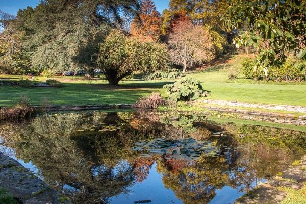 autumn colours at Gliffaes