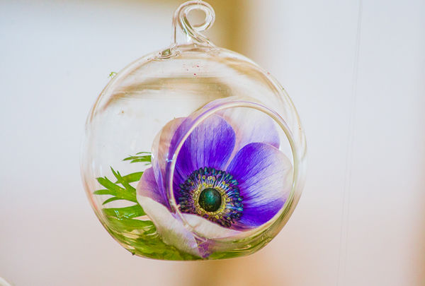 hanging bauble containing flower; display by Flowers by BeccaJane