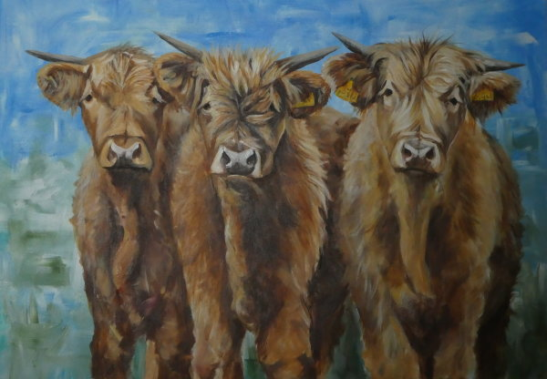 3 Highland youngsters