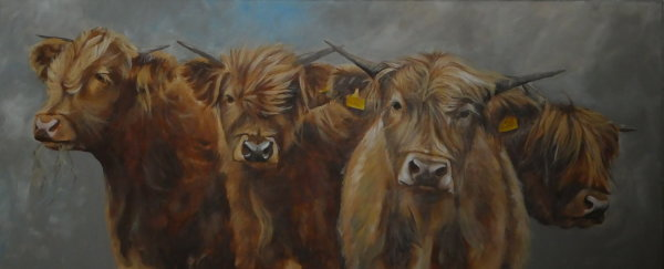 4 young highlands