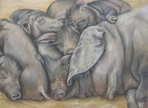 A Heap of piglets