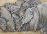 Majorcan black pigs