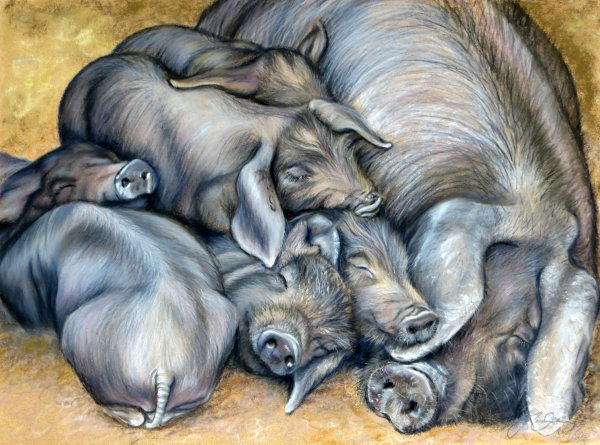 A pile of piglets 2