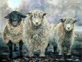 Dartmoor Trio