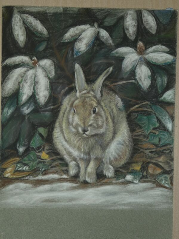Sheltering Rabbit