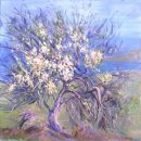 Old Almond Tree. Spring, Crete. Oil on canvas