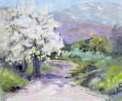 Spring on Catharo
