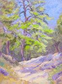 Kroustas Forest.