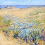 Malia Sand Dunes