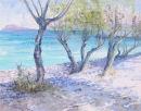 Tamarisk Trees, Istron Beach. Crete