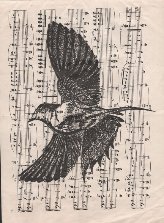 Musical Bird! In a cream mount. Overall size 14x11 inches/35.5x27.5 cms £20 inc P&P UK only. Contact for overseas postage