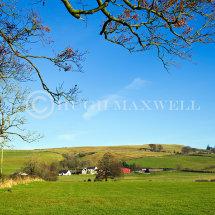 Henryton Farm
