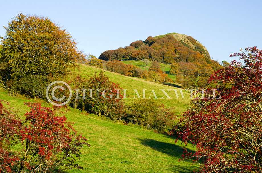 Autumn near Loudoun Hill