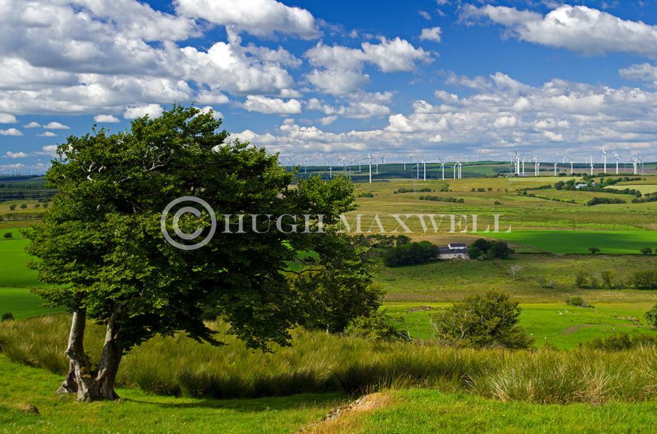 Loudoun Hill View