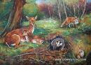 Wildlife Ireland (  18 x 24 )