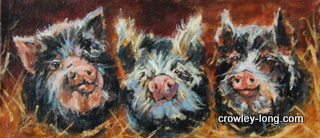 "Kune Kune Pigs <p style=""font-size:12pt;"">(SOLD)</p>"